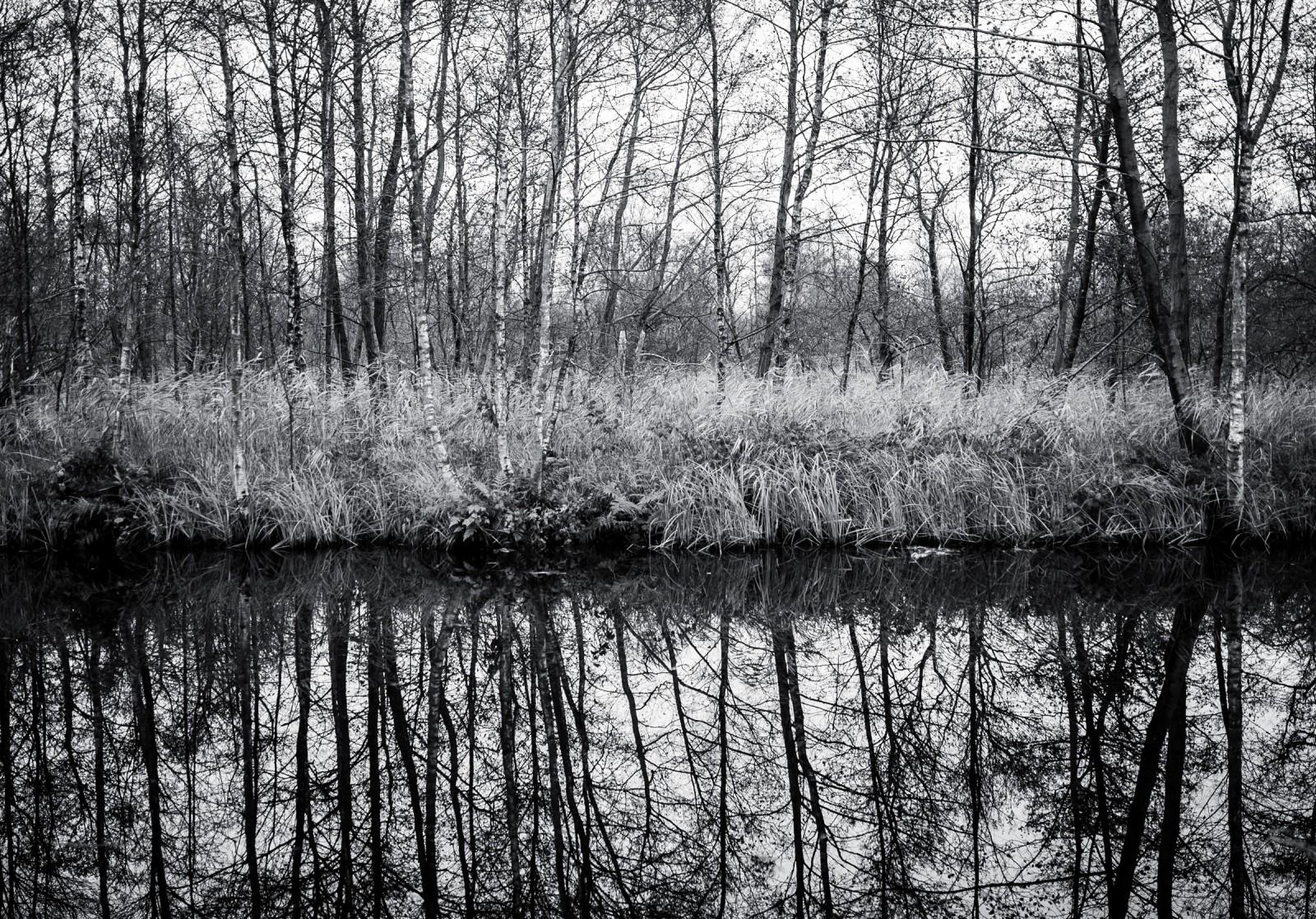 019_Nationaal_park_Weerribben-Wieden__1-1118